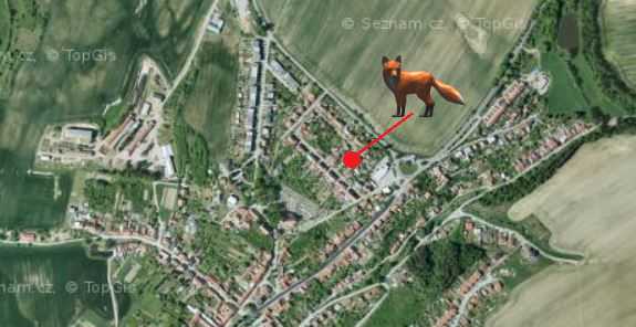 Místo, kde Jirka viděl naulici lišku.